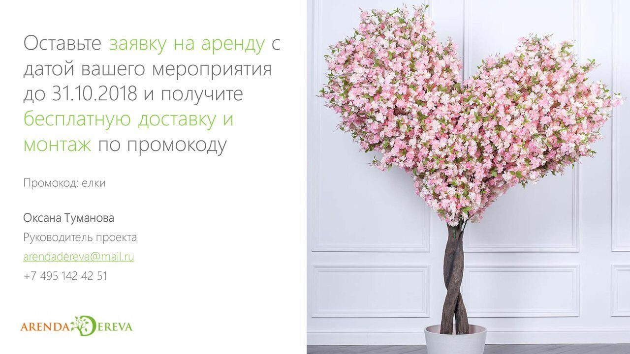 Аренда_деревьев_презентация-15