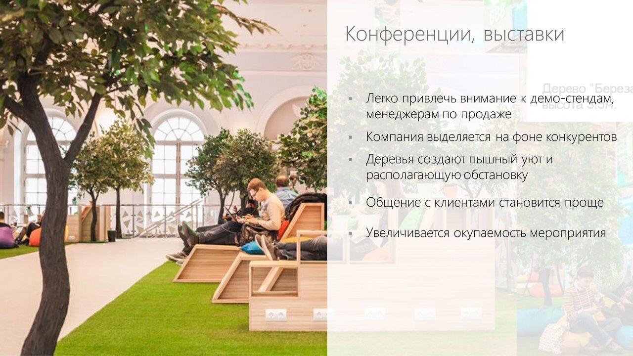 Аренда_деревьев_презентация-6