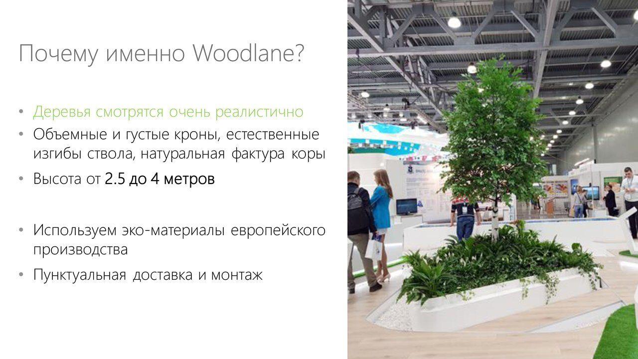 Аренда_деревьев_презентация-9