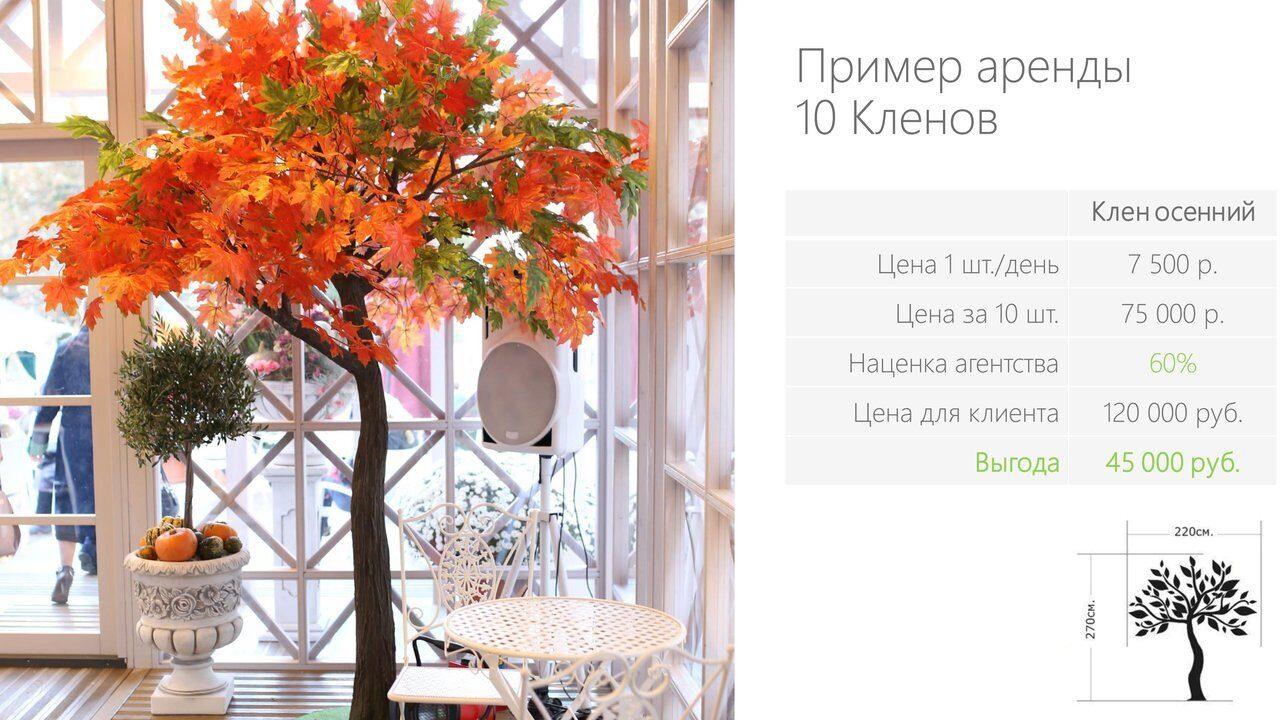 Аренда_деревьев_презентация-10
