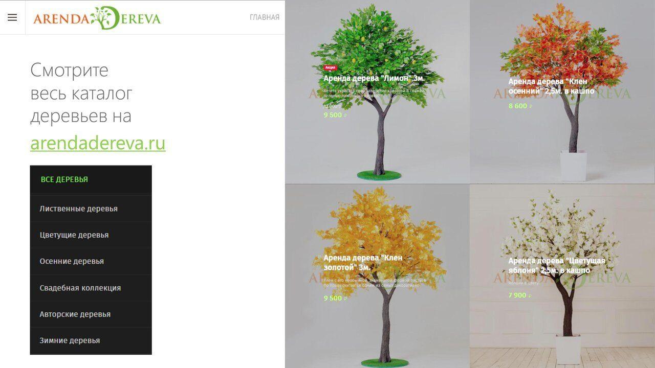 Аренда_деревьев_презентация-13