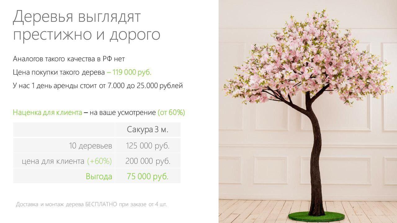 Аренда_деревьев_презентация-11