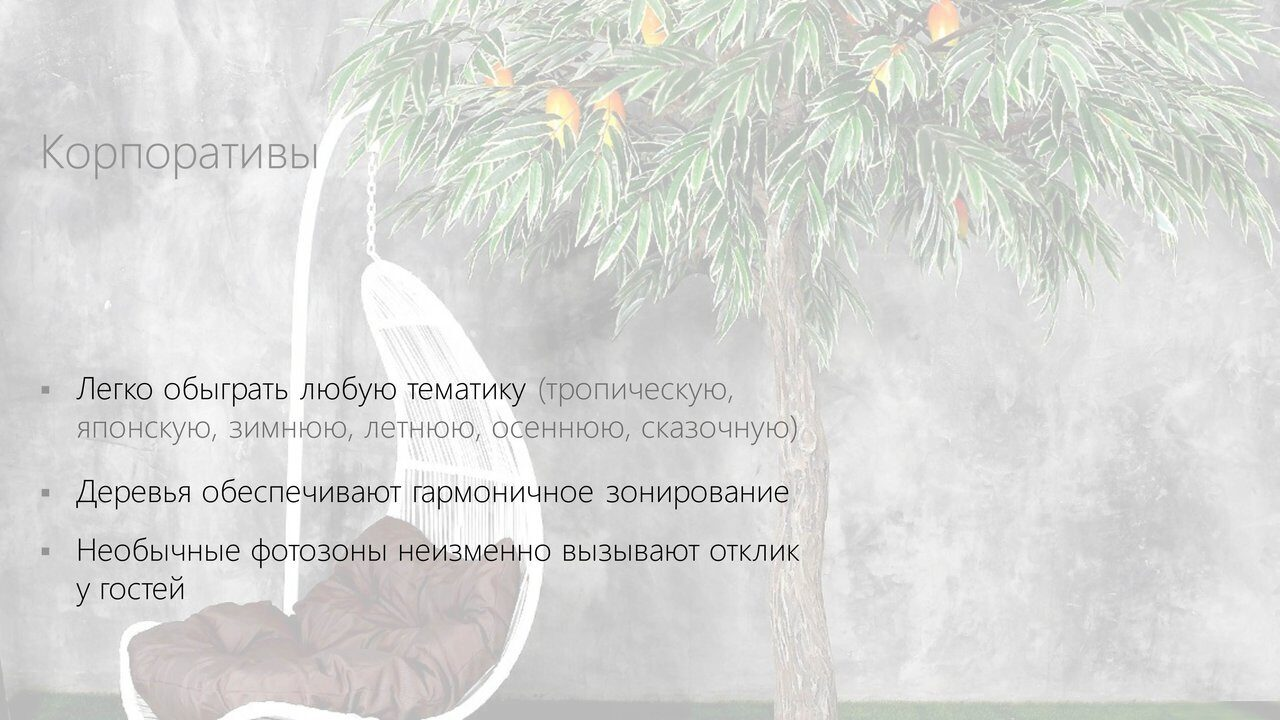 Аренда_деревьев_презентация-5