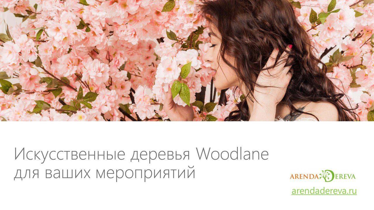 Аренда_деревьев_презентация-1